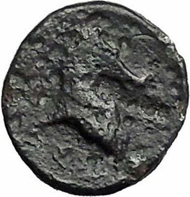 PHARSALOS in THESSALY 400BC Athena Horse Authentic Ancient Greek Coin i49215