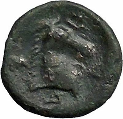 PHARSALOS in THESSALY 400BC Athena Horse Authentic Ancient Greek Coin i49216