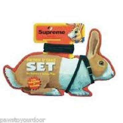 Rabbit & Guinea Pig Harness & Lead Set Pet Toy Supreme