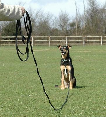Clix recall line dog puppy training lead 5m & 10m long works with halti