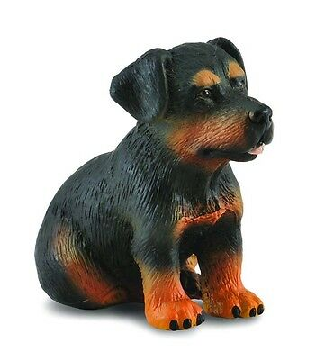 Rottweiler Puppy #88190 ~  Dog Replica FREE SHIP/USA w/$25+CollectA Products