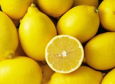 Lemon Fresh Fragrance Oil Candle/Soap Making Supplies **Free Shipping *