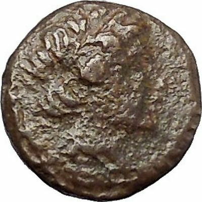 Antiochos III  the Great  223BC RARE Ancient Greek Coin Elephant  i47481