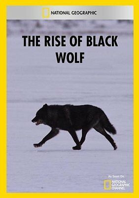 NEW The Rise of Black Wolf (DVD)