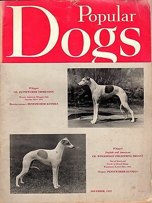 Vintage Popular Dogs Magazine November 1955 Whippet Cover
