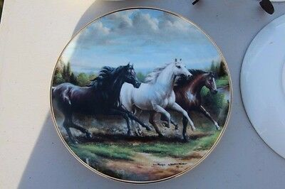 Franklin Mint Horse Collector Plate - Racing The Wind