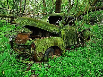 CHEVY 3100 CHIA-PET 40'S-50'S TRUCK ABANDONED IN FOREST 5 WINDOW return to earth
