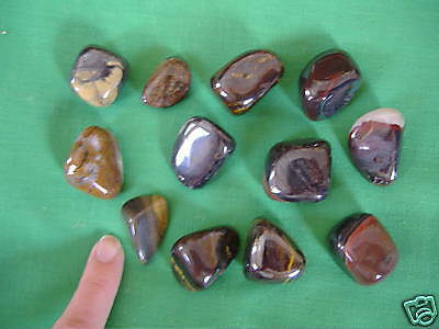 Tumbled Tiger Iron for EMPOWERMENT in RELATIONSHIPS & CAREER Pocket Stone