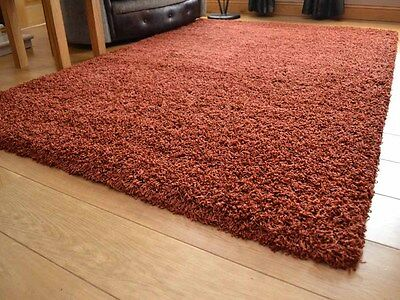 Dark Rust Non-Shedding Small Extra Large 5cm Soft Thick Plain Shaggy Rug Runner