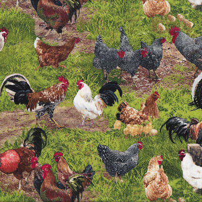 Chickens Hens Roosters Farm Animal Grass Country Bird Quilt Fabric FQ or Metre *