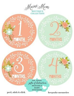 Monthly Baby Girl Stickers Coral Mint Floral  Nursery Decor Month Shower Gift
