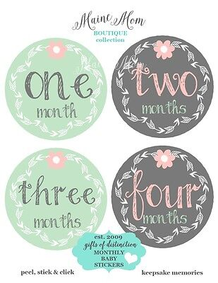 Monthly Baby Girl Stickers Mint Gray Floral Nursery Decor Month Gift Photo Prop