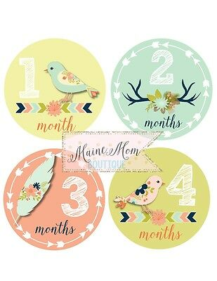 Monthly Baby Girl Stickers Birds Feathers Antler Tribal Nursery Decor Month Gift