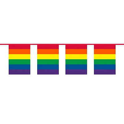 Rainbow Flag Bunting 10 Meters GAY PRIDE Colourful Party Decoration 22623