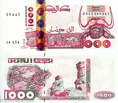 ALGERIA 1000 Dinars Banknote World Money Currency Africa Bill p142b 1998 Note
