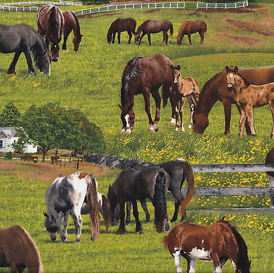 Horses on Grass Farm Animal Country Barn Fence Quilt Fabric FQ or Metre NEW