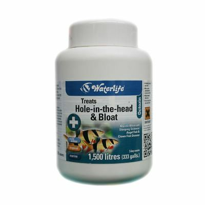 Waterlife Octozin (200 tabs) Hole in The Head Treatment for Internal Parasites