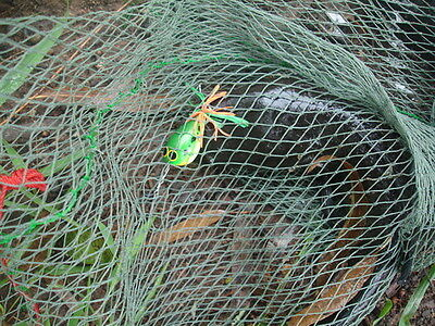 """Farmer And Fishing Camping Net Bag Mash Bag: Fishes, Fruits And Other 18""""-23"""""""