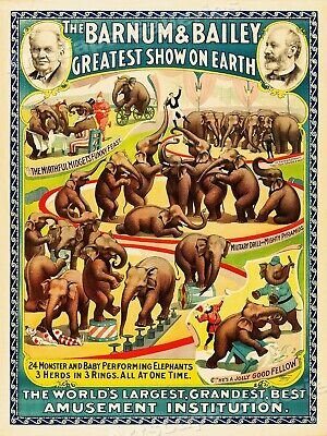 Barnum & Bailey 1930's Vintage Style Performing Elephants Circus Poster - 20x28