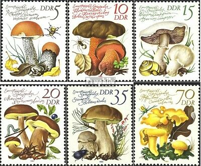DDR 2551-2556 (complete.issue) unmounted mint / never hinged 1980 Mushrooms