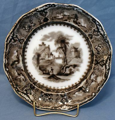 """Flow Mulberry Ironstone 7"""" 12-Panel Plate, Alcock in Vincennes Pattern 1857"""