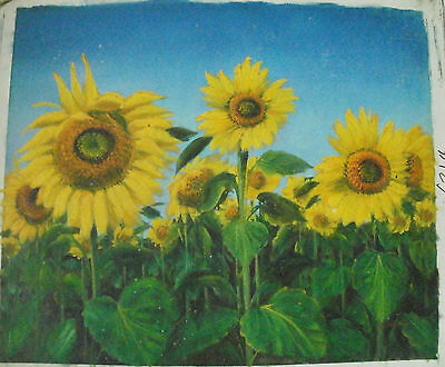 "Flower Oil Painting Art Rolled Or Stretched 20X24"" 30 Different Ref1"