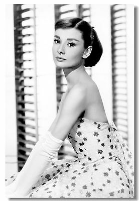 AUDREY HEPBURN Movie Art Silk Poster Roman Holiday Vintage Picture 003
