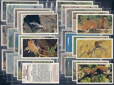 Players Doncella-Full Set- Britains Endangered Wildlife - Exc+++
