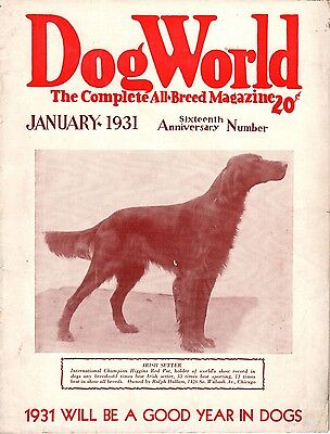 Vintage Dog World Magazine January 1931 Irish Setter Cover