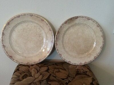 Crown Pottery Comapny Two Shabby Dinner Plates Rose Fooral Pattern Set Of 2