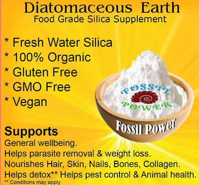 Diatomaceous Earth 450 g 100 % PURE