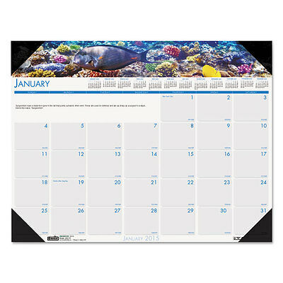 House of Doolittle Sea Life Photographic Monthly Desk Pad Calendar 22 X 17 2017