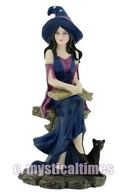 New Selene  Witch  Figurne Ornament From Nemesis Now With Free Post