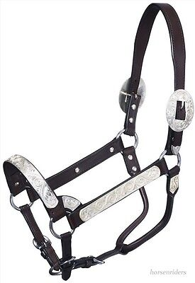 Silver Show Halter-Dark Oil Leather-Rope Design Horse Size-Matching Lead Shank