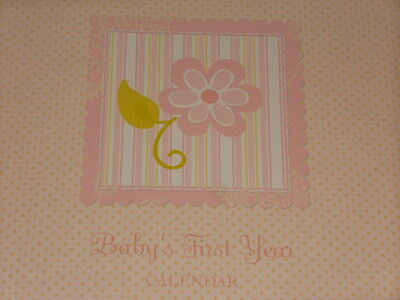Baby's First Year Calendar Girl Pink Baby Book Memory Keepsake New