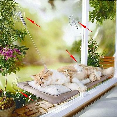 Kitty Kitten Window Mounted Basking Bed Pet Shelf Cat Perch Seat High Hammock LN