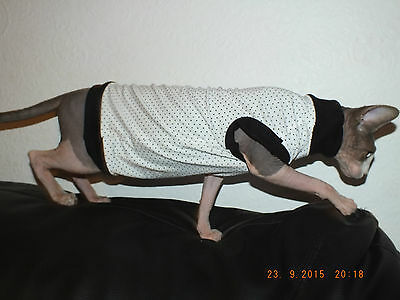 SPOT ATTACK!!!!...Hand Made Sphynx Cat Clothes for those Pampered Pets..