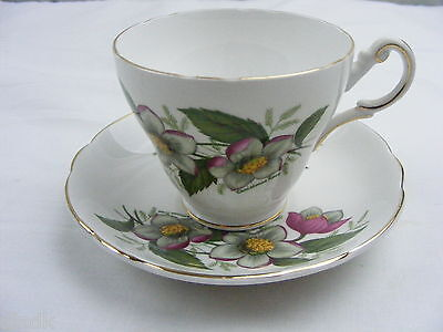 Vintage China Teacup and Saucer Regency English Bone China Made in England