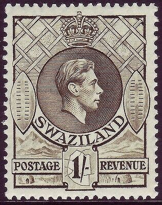 Sg35, 1s brown-olive, VLH MINT. Cat £16. Perf 13½x13
