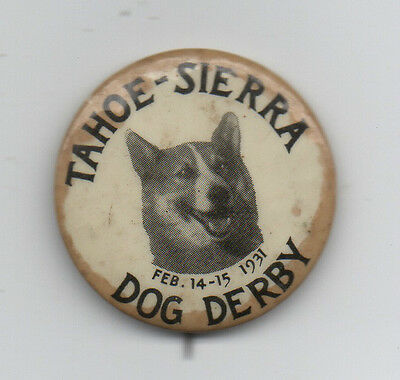 1931 Celluloid Advertising Pinback for the Tahoe Sierra Dog Derby w/ Dog