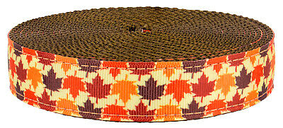 5 Yards Country Brook Design® 1 Inch Shibuya Polyester Webbing