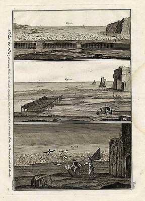 Antique Hunting Print-NETS-BIRDS-Panckoucke-1793