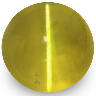 1.84-Carat 6mm Round Deep Greenish Yellow Chrysoberyl Cat's Eye from Ceylon