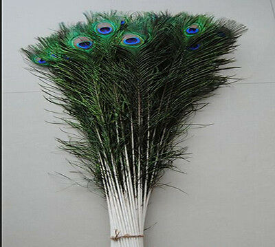 Wholesale 10-100PCS 25-95cm/10-40inches Beautiful Natural Color Peacock Feather
