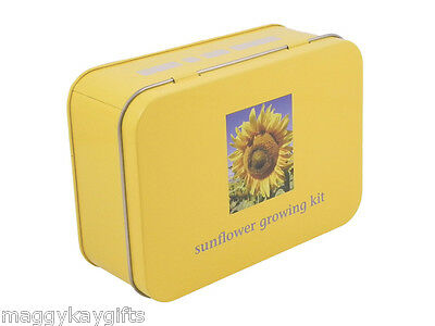 Giant Sunflower Growing Kit - seeds pots labels tape measure childrens gift