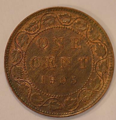 1905 High End ALMOST UNCIRCULATED & LUSTROUS Canadian Large Cent