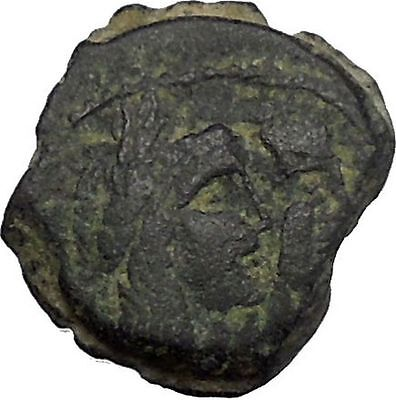 King Malichus II Arab Caravan Kingdom of Nabataea 64AD Greek Type Coin i50450