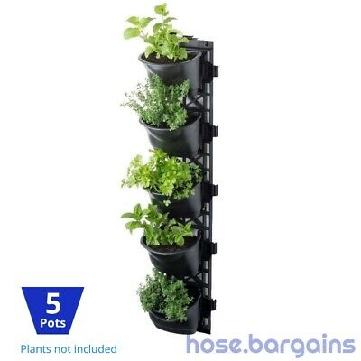 Vertical Garden Kit 5 Pots - Green Wall Hanging Planter Box DIY Herb Succulent