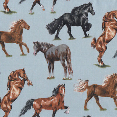 Horse Breeds on Blue Brown Black Grey Horses Quilt Fabric FQ or Metre *New*