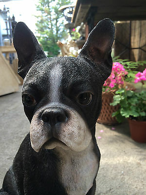 Boston Terrier, sitting Boston terrier garden statue Figure Boston french bull